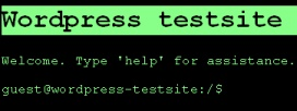 WordPress Theme: CLI 1.0