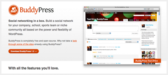 Community building with BuddyPress
