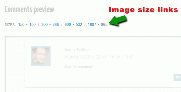 Links to all image sizes in WordPress