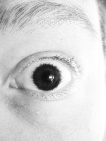 Terror Eye