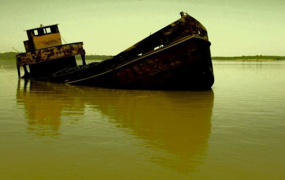 Blogging Pitfalls: Going Down With Your (Hosting) Ship