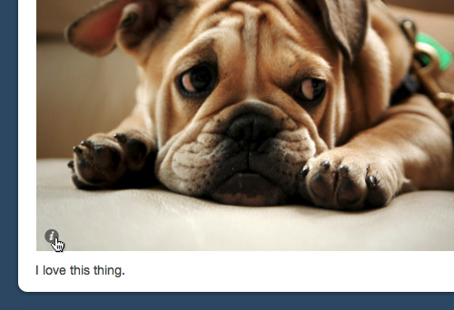 Tumblr Gives Photo Bloggers Another Reason To Switch