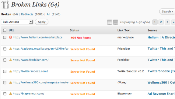 Broken Links Checker Output