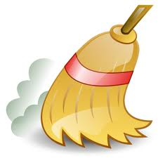 Wordpress Broom