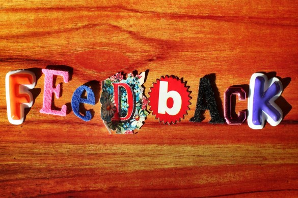 feedback guest bloggers