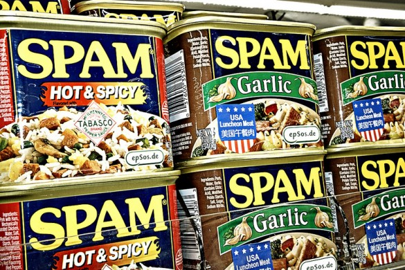 How to Make Your Blog or Forum Non-sensitive to Spam Attacks
