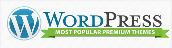 Most Popular WordPress Premium Themes  infographic    WPTemplate.com