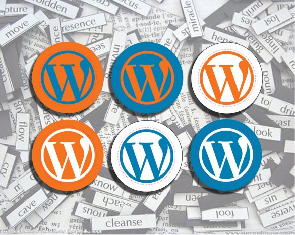 common problems with WordPress