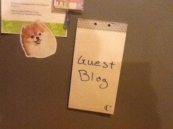 guest writing network