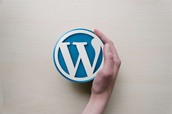 Factors to Consider When Choosing a WordPress Theme
