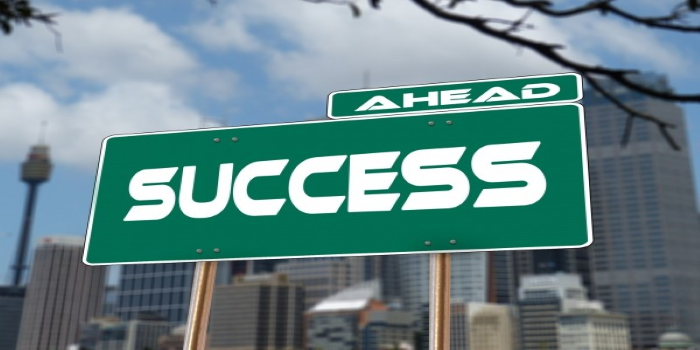 success-road-sign-traffic-sign-career-rise-1 (Custom)
