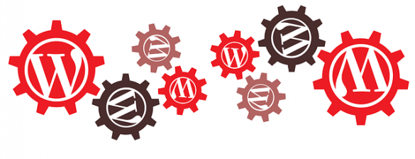 5 Quick Tips to Improve WordPress for Beginners