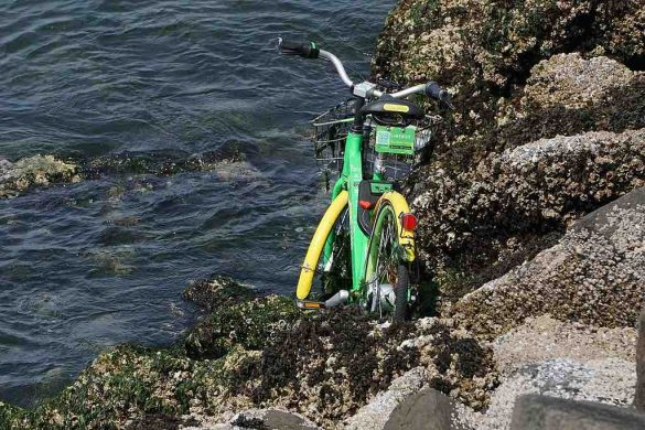 How to Avoid the Limebike Model of Content Organization