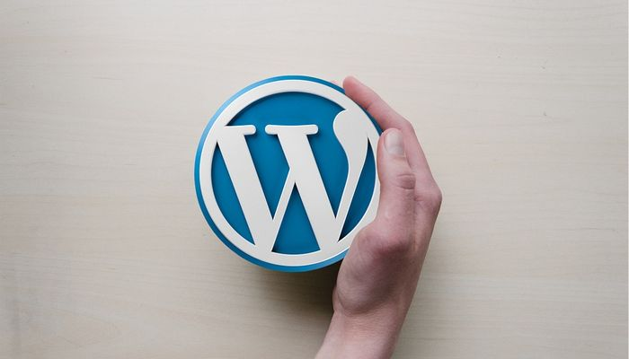 The Pros and Cons of the Best WordPress Backup Plugins