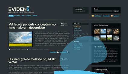 Evidens WordPress Theme